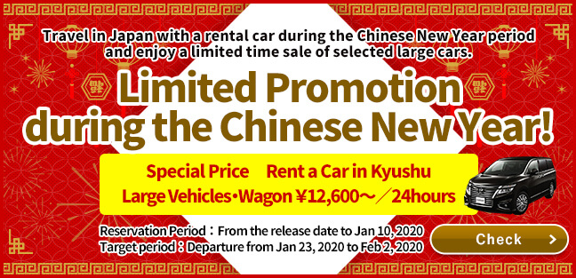 Limited Promotion during the Chinese New Year period!