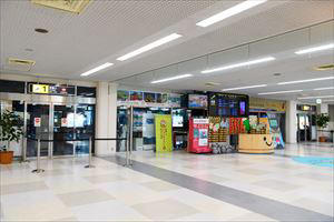 1. There is a rental car counter next to the Information Center in front of the Domestic Arrival Gate.