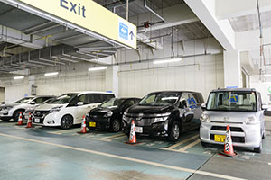4. After checking in at the desk, you are guided to the parking lot where your rental car parks.